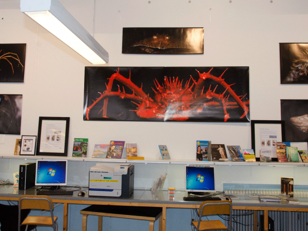 Deep sea exhibition  Br  nsh  j library  1